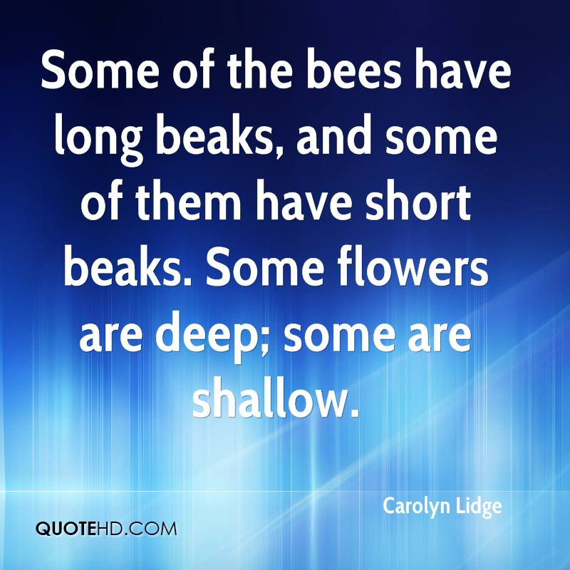 Some of the bees have long beaks, and some of them have short beaks. Some flowers are deep; some are shallow.