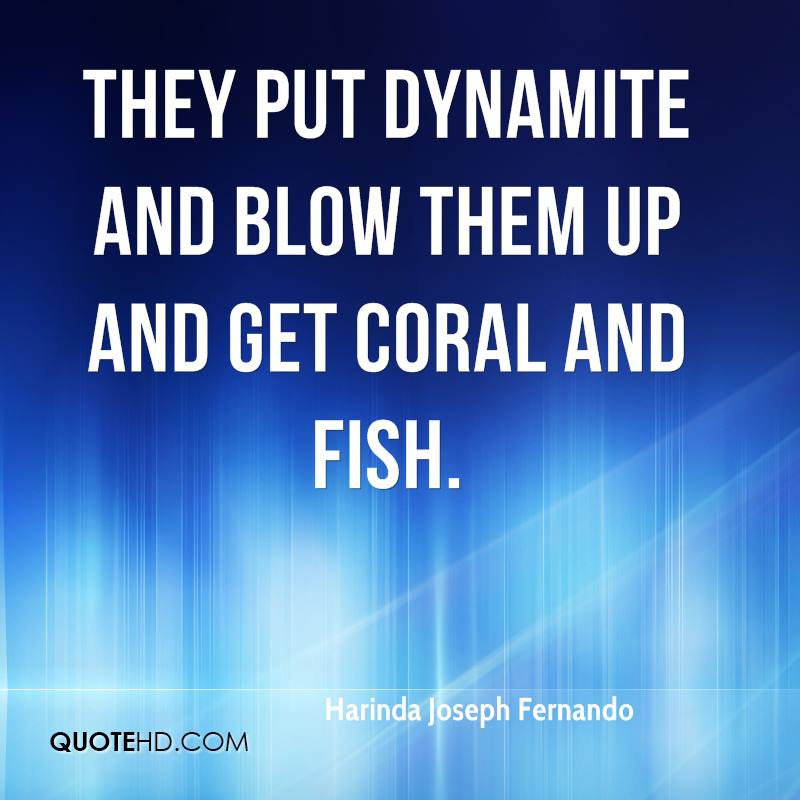 They put dynamite and blow them up and get coral and fish.
