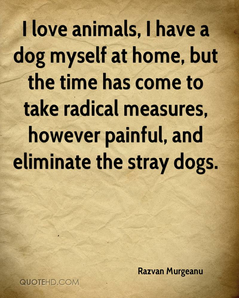 Dog Love Quotes Razvan Murgeanu Quotes  Quotehd