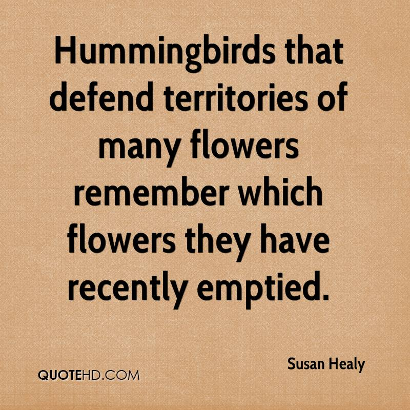 Hummingbirds that defend territories of many flowers remember which flowers they have recently emptied.