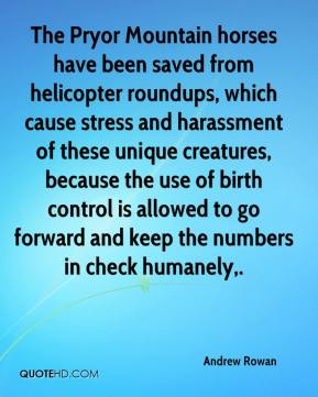 Andrew Rowan - The Pryor Mountain horses have been saved from helicopter roundups, which cause stress and harassment of these unique creatures, because the use of birth control is allowed to go forward and keep the numbers in check humanely.