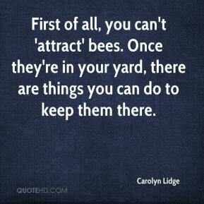 Carolyn Lidge - First of all, you can't 'attract' bees. Once they're in your yard, there are things you can do to keep them there.
