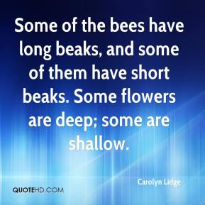 Carolyn Lidge - Some of the bees have long beaks, and some of them have short beaks. Some flowers are deep; some are shallow.