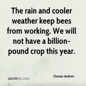 Chester Andrew - The rain and cooler weather keep bees from working. We will not have a billion-pound crop this year.