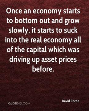 David Roche - Once an economy starts to bottom out and grow slowly, it starts to suck into the real economy all of the capital which was driving up asset prices before.