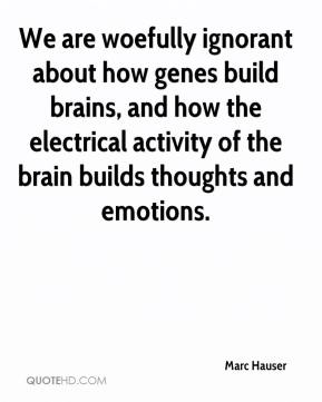 Marc Hauser  - We are woefully ignorant about how genes build brains, and how the electrical activity of the brain builds thoughts and emotions.