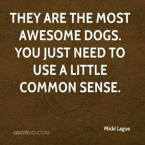 They are the most awesome dogs. You just need to use a little common sense.