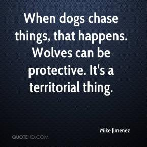 Mike Jimenez  - When dogs chase things, that happens. Wolves can be protective. It's a territorial thing.