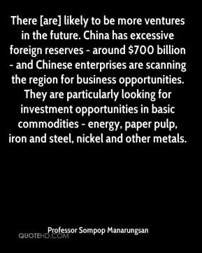 Professor Sompop Manarungsan  - There [are] likely to be more ventures in the future. China has excessive foreign reserves - around $700 billion - and Chinese enterprises are scanning the region for business opportunities. They are particularly looking for investment opportunities in basic commodities - energy, paper pulp, iron and steel, nickel and other metals.