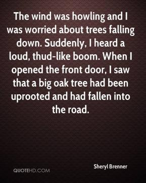 Sheryl Brenner  - The wind was howling and I was worried about trees falling down. Suddenly, I heard a loud, thud-like boom. When I opened the front door, I saw that a big oak tree had been uprooted and had fallen into the road.