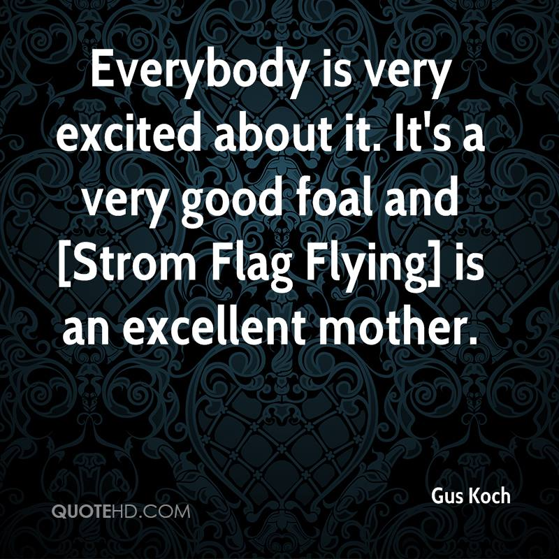 Everybody is very excited about it. It's a very good foal and [Strom Flag Flying] is an excellent mother.