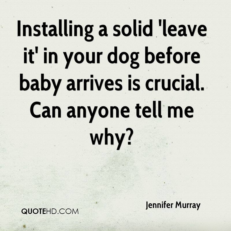 Installing a solid 'leave it' in your dog before baby arrives is crucial. Can anyone tell me why?