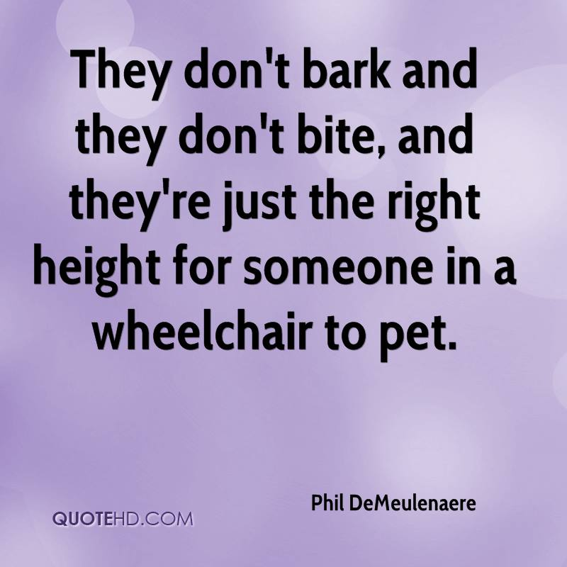 They don't bark and they don't bite, and they're just the right height for someone in a wheelchair to pet.