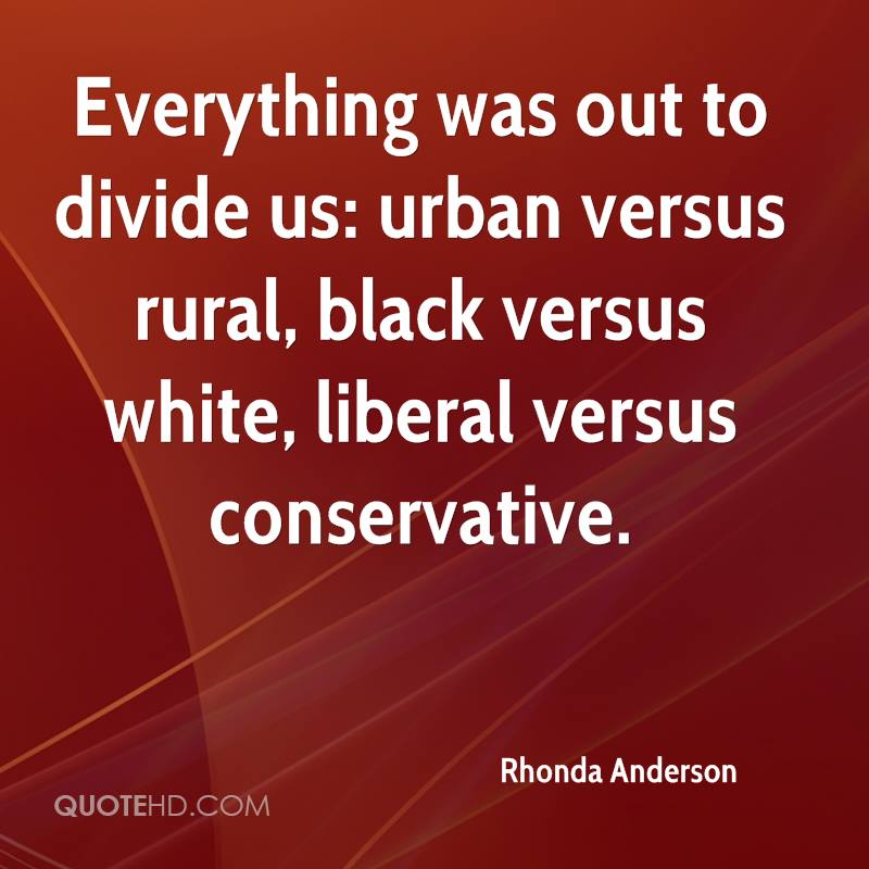 Everything was out to divide us: urban versus rural, black versus white, liberal versus conservative.