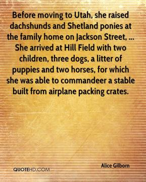 Alice Gilborn - Before moving to Utah, she raised dachshunds and Shetland ponies at the family home on Jackson Street, ... She arrived at Hill Field with two children, three dogs, a litter of puppies and two horses, for which she was able to commandeer a stable built from airplane packing crates.