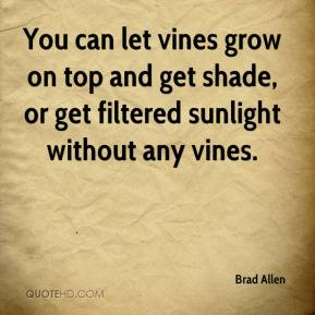 Brad Allen - You can let vines grow on top and get shade, or get filtered sunlight without any vines.