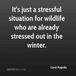Carol Majeske - It's just a stressful situation for wildlife who are already stressed out in the winter.