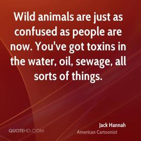 Jack Hannah - Wild animals are just as confused as people are now. You've got toxins in the water, oil, sewage, all sorts of things.
