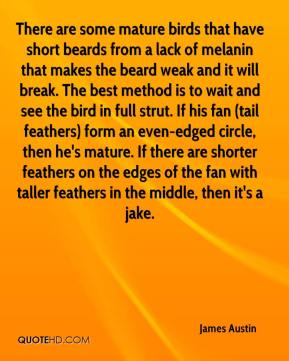 James Austin - There are some mature birds that have short beards from a lack of melanin that makes the beard weak and it will break. The best method is to wait and see the bird in full strut. If his fan (tail feathers) form an even-edged circle, then he's mature. If there are shorter feathers on the edges of the fan with taller feathers in the middle, then it's a jake.