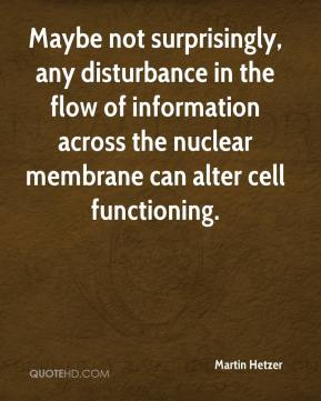 Martin Hetzer  - Maybe not surprisingly, any disturbance in the flow of information across the nuclear membrane can alter cell functioning.
