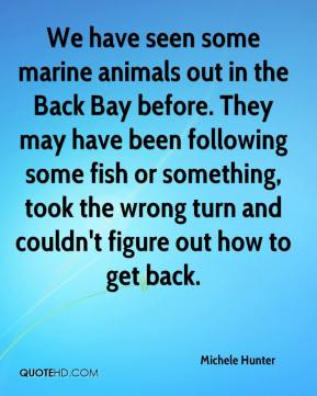 Michele Hunter  - We have seen some marine animals out in the Back Bay before. They may have been following some fish or something, took the wrong turn and couldn't figure out how to get back.