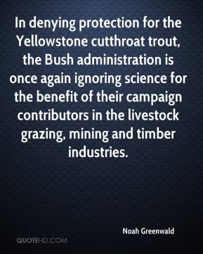 Noah Greenwald  - In denying protection for the Yellowstone cutthroat trout, the Bush administration is once again ignoring science for the benefit of their campaign contributors in the livestock grazing, mining and timber industries.