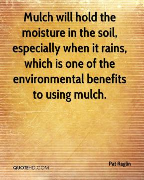 Pat Raglin  - Mulch will hold the moisture in the soil, especially when it rains, which is one of the environmental benefits to using mulch.