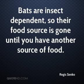 Regis Senko  - Bats are insect dependent, so their food source is gone until you have another source of food.