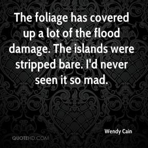 Wendy Cain  - The foliage has covered up a lot of the flood damage. The islands were stripped bare. I'd never seen it so mad.