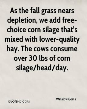 Winslow Goins  - As the fall grass nears depletion, we add free-choice corn silage that's mixed with lower-quality hay. The cows consume over 30 lbs of corn silage/head/day.