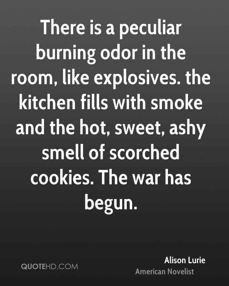There is a peculiar burning odor in the room, like explosives. the kitchen fills with smoke and the hot, sweet, ashy smell of scorched cookies. The war has begun.