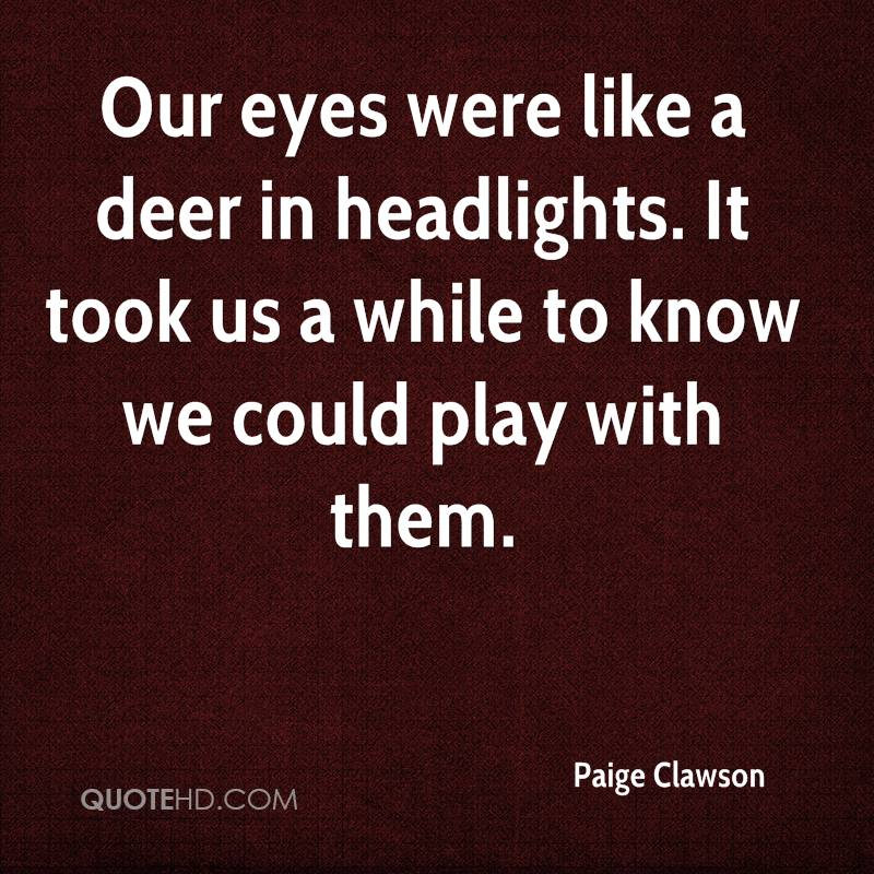 Our eyes were like a deer in headlights. It took us a while to know we could play with them.