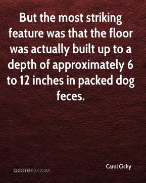 Carol Cichy - But the most striking feature was that the floor was actually built up to a depth of approximately 6 to 12 inches in packed dog feces.
