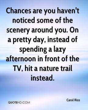 Carol Rice - Chances are you haven't noticed some of the scenery around you. On a pretty day, instead of spending a lazy afternoon in front of the TV, hit a nature trail instead.
