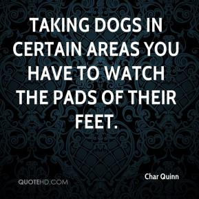 Char Quinn - Taking dogs in certain areas you have to watch the pads of their feet.