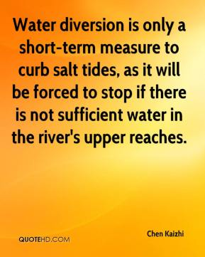 Chen Kaizhi - Water diversion is only a short-term measure to curb salt tides, as it will be forced to stop if there is not sufficient water in the river's upper reaches.