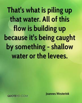 Joannes Westerink  - That's what is piling up that water. All of this flow is building up because it's being caught by something - shallow water or the levees.
