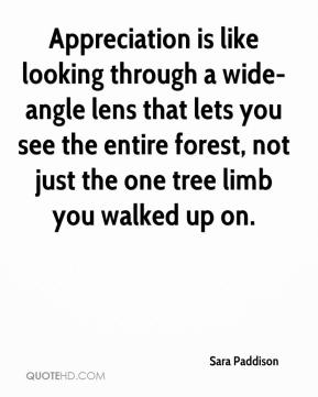 Appreciation is like looking through a wide-angle lens that lets you see the entire forest, not just the one tree limb you walked up on.