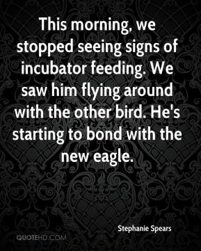 Stephanie Spears  - This morning, we stopped seeing signs of incubator feeding. We saw him flying around with the other bird. He's starting to bond with the new eagle.