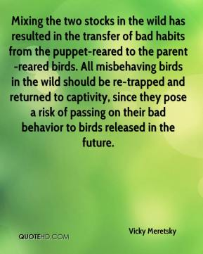 Vicky Meretsky  - Mixing the two stocks in the wild has resulted in the transfer of bad habits from the puppet-reared to the parent-reared birds. All misbehaving birds in the wild should be re-trapped and returned to captivity, since they pose a risk of passing on their bad behavior to birds released in the future.