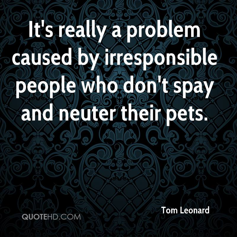It's really a problem caused by irresponsible people who don't spay and neuter their pets.