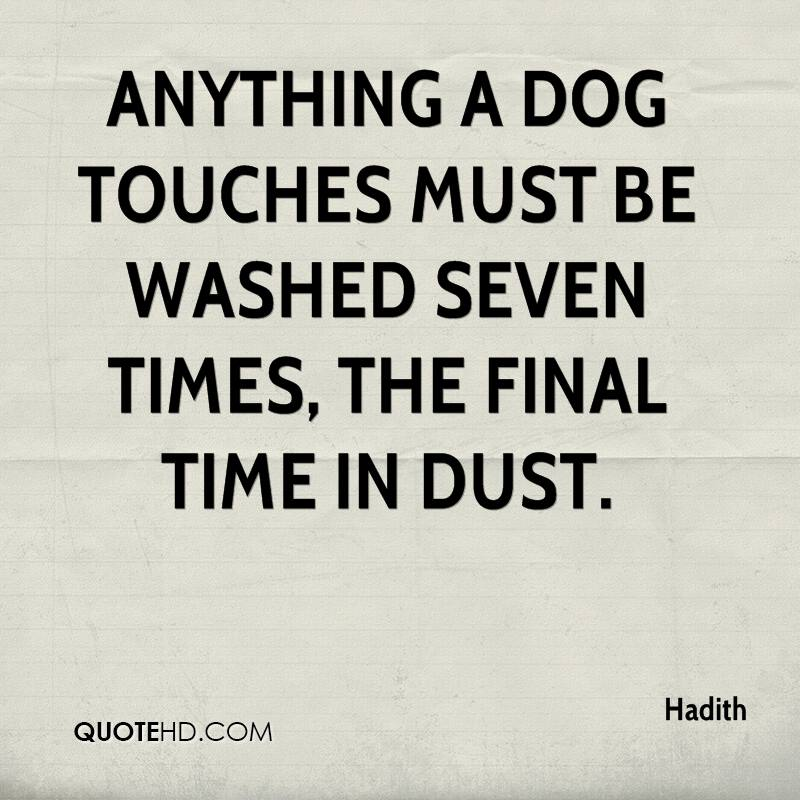 Anything a dog touches must be washed seven times, the final time in dust.
