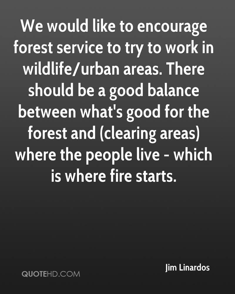 We would like to encourage forest service to try to work in wildlife/urban areas. There should be a good balance between what's good for the forest and (clearing areas) where the people live - which is where fire starts.