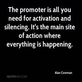 Alan Cowman - The promoter is all you need for activation and silencing. It's the main site of action where everything is happening.