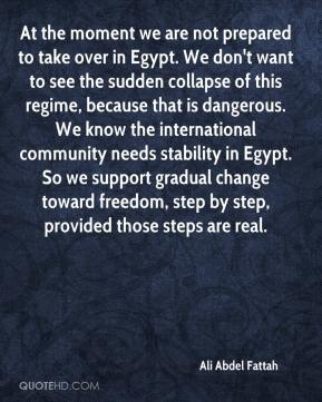 Ali Abdel Fattah - At the moment we are not prepared to take over in Egypt. We don't want to see the sudden collapse of this regime, because that is dangerous. We know the international community needs stability in Egypt. So we support gradual change toward freedom, step by step, provided those steps are real.