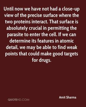 Amit Sharma - Until now we have not had a close-up view of the precise surface where the two proteins interact. That surface is absolutely crucial in permitting the parasite to enter the cell. If we can determine its features in atomic detail, we may be able to find weak points that could make good targets for drugs.