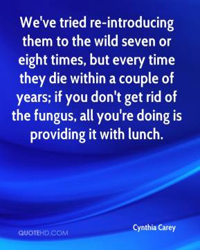 Cynthia Carey - We've tried re-introducing them to the wild seven or eight times, but every time they die within a couple of years; if you don't get rid of the fungus, all you're doing is providing it with lunch.