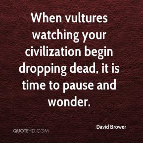 David Brower - When vultures watching your civilization begin dropping dead, it is time to pause and wonder.