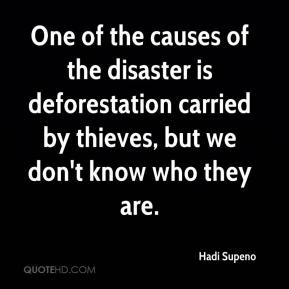 Hadi Supeno - One of the causes of the disaster is deforestation carried by thieves, but we don't know who they are.
