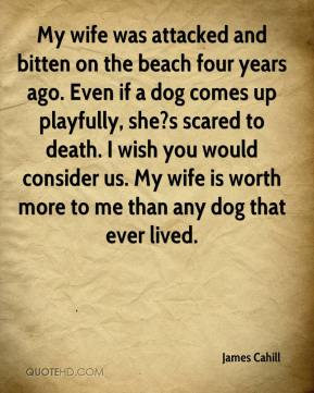 My wife was attacked and bitten on the beach four years ago. Even if a dog comes up playfully, she?s scared to death. I wish you would consider us. My wife is worth more to me than any dog that ever lived.